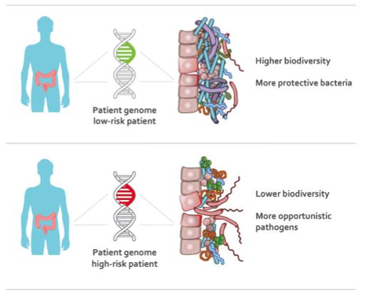 gut microflora weight loss